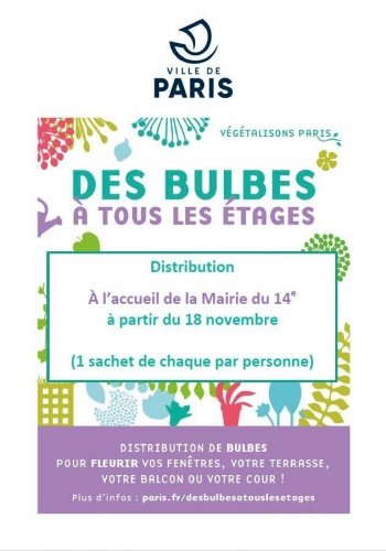 distribution  de graines et bulbes à la mairie du 14ème à partir du 18 nov 2019.jpg