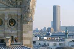 Abeilles-ville-Paris sur les toits de l'Opéra à Montparnasse.jpg
