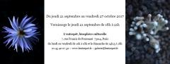 l'entrepôt expo du 21 sept au 27 octobre Elia Rodière.jpg