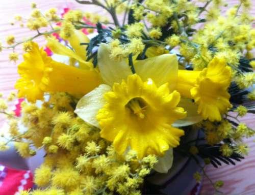 un bien beau bouquet en voyé par notre photographe Marie- Chantal Belin.jpg