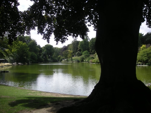 parc Montsouris lac.2 jpg.jpg