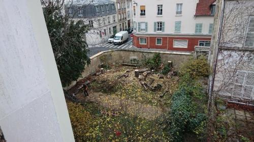 espace vert protégé au coin de la rue Hallé et la rue Remy -dumoncel après l'abattade des arbres le 16 décembre 2020.jpg