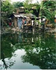 faigenbaum Inde vue du fleuve hoogly Calcutta.jpg