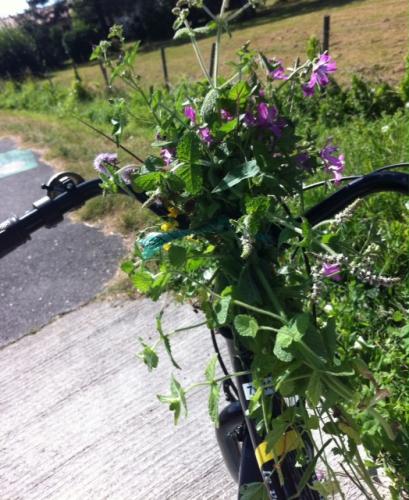 les bouquets de Marie à bicyclette.JPG