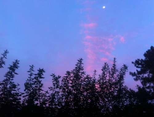 Savoir le rose de la vie ciel au lever du soleil  à Arcachon photo Marie Belin.jpg