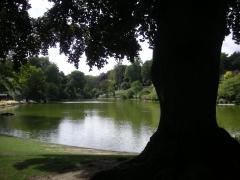 parc Montsouris lac.2 jpg.jpg
