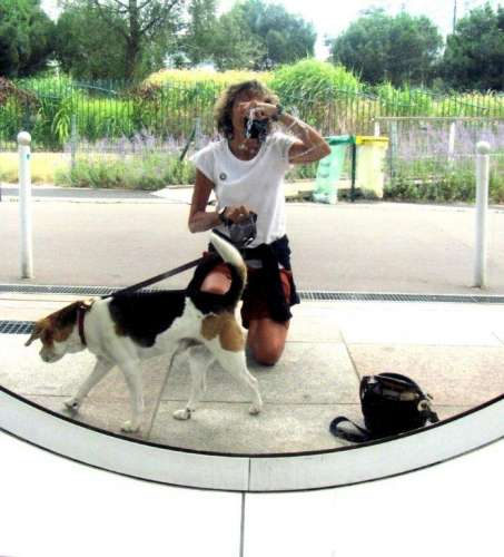 effets de miroirs dans le jardin Atlantique.2 photo Marie Belin JPG.JPG