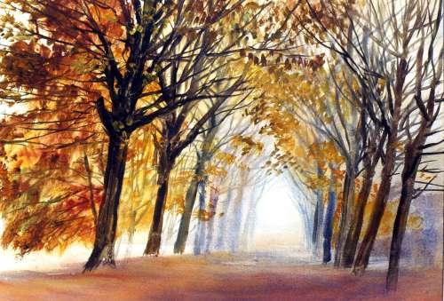 couleurs d'automne2.jpg