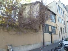 rue du moulin vert glycines bleues avec moins de voitures printemps 2016.jpg