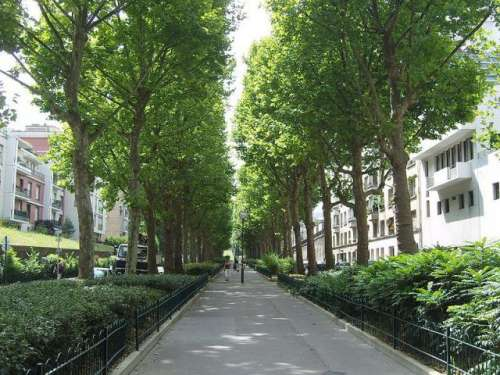 paris-avenue-rene-coty.JPG