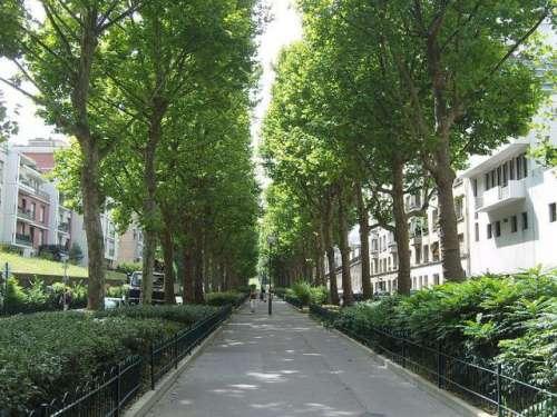 paris-avenue-rene-coty.JPG