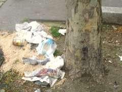 semaine du développement durable déchets photo Marie Belin.JPG