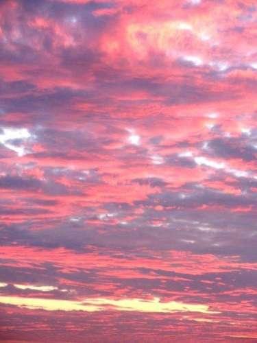 Savoir voir le rose de la vie des immeubles Mouchotte 10 novembre 2011 à l'aube lde la pièce principale 16 étage.JPG