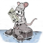 la souris d'eau publication logo.jpeg