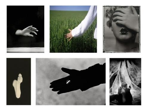 6_photos.jpg
