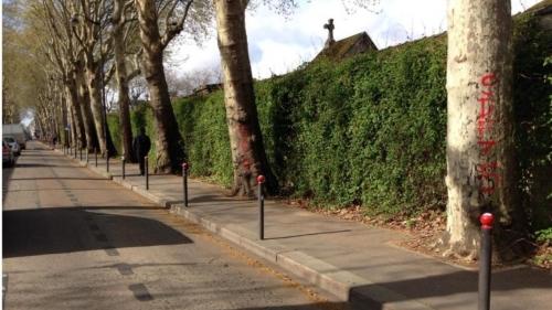 Insolite hommage à Agnés Varda rue Emile Richard potelets coiffés de roue et blanc.jpg