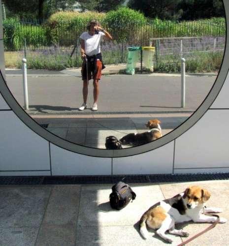 effets de miroirs dans le jardin Atlantique photo Marie Belin.JPG