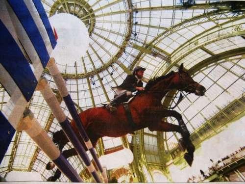 pâques hermes gdPalais chevaux obstacle csio 090.jpg