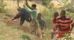 faim,faim dans le monde,ccfd-terre solidaire,chrétiens dans le monde rural,78014,paris 14e