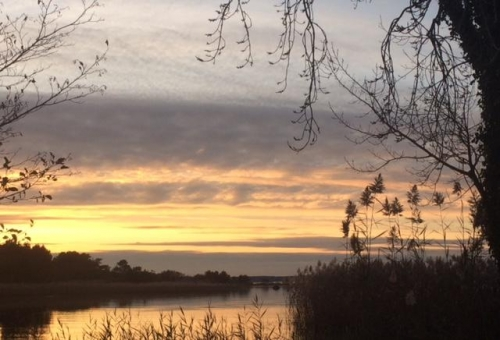 lac de Sanguinet près d' arcachon photo Marie Belin.jpg