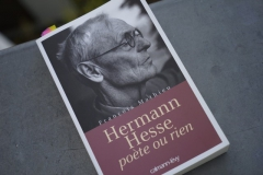 SDG soirée Hermann Hesse 21 janvier 2016.jpg