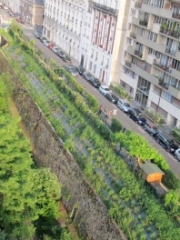 jardin Vert-Tige vu d'en haut.jpg