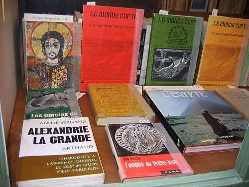 Monde copte janv2011.JPG