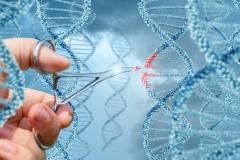 université populaire du 14 nov-déc 2017 cycle sur les OGM et génômes.jpg