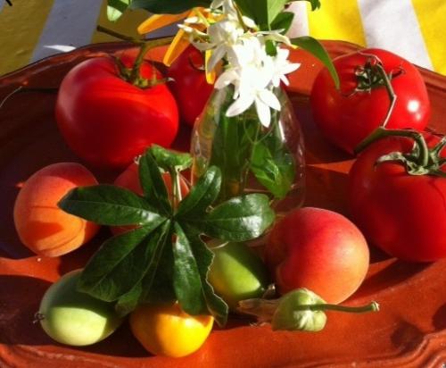 fleurs et fruits composition autour du jasmin photo marie Belin juillet 2017 4.jpg